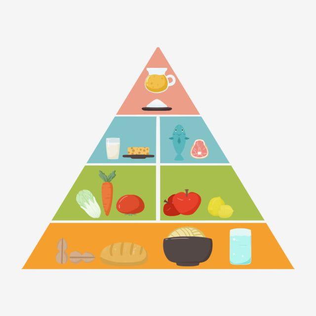 Gambar Pemakanan Pagoda Bahan Vektor Makanan Turun Template Pagoda Pagoda Pemakanan Piramid Makan Sayur Sayuran Png Dan Psd Untuk Muat Turun Percuma Food Pyramid Science Projects Kids Rugs