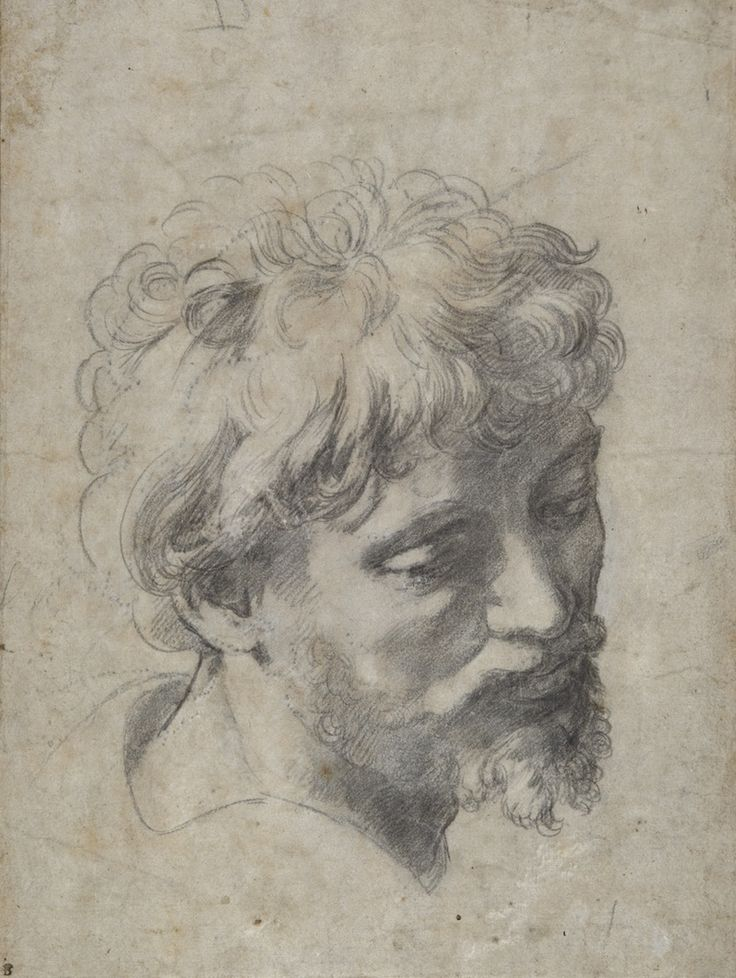 Head of a Young Apostle by Raphael, a drawing made in preparation for his final painting, The Transfiguration. Beautiful.