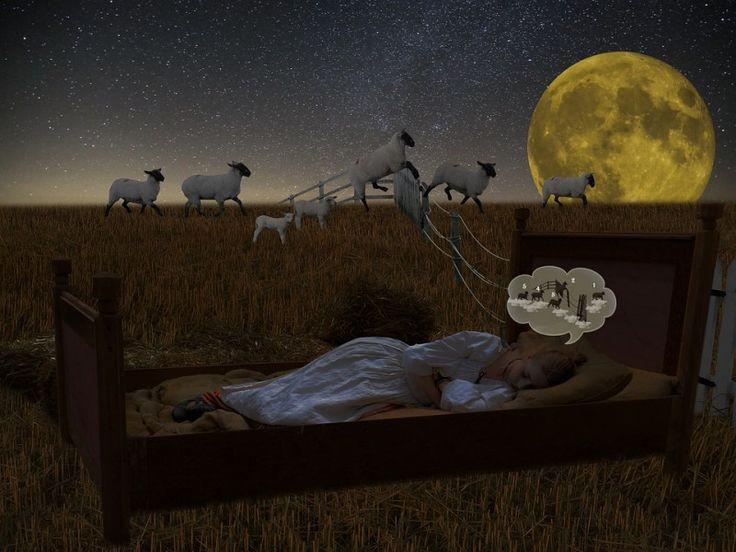 Przyczyn problemów ze snem jest wiele. Racjonalne odżywianie, zdrowe, pozbawione dodatków chemicznych produkty oraz aktywność fizyczna bez wątpienia sprzyjają dobrej kondycji i efektywnemu wypoczynkowi.