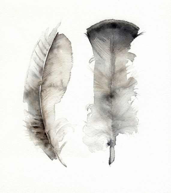 Turkey Feathers- archival print, feather art, feather watercolor. $20.00, via Etsy.