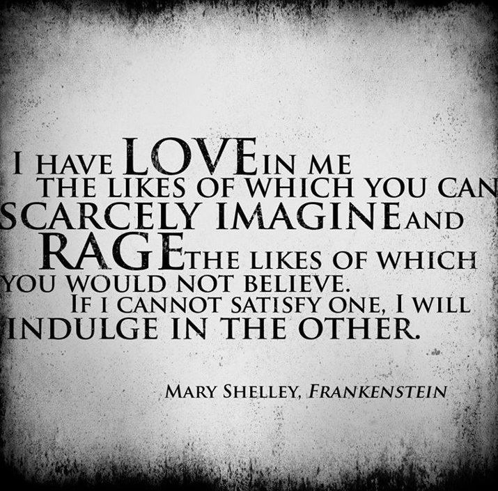 Quotes From Frankenstein 241 Best Quotes Images On Pinterest  Words Lyrics And The Words