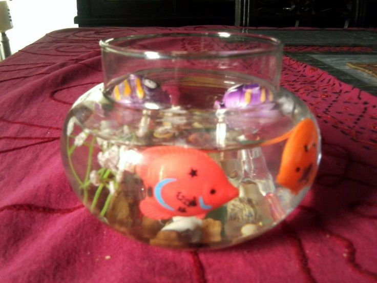 1000 images about diy fake fish bowls aquariums on for How to make a fish bowl
