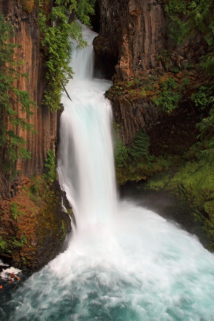Toketee Falls, Umpqua Highway, Oregon