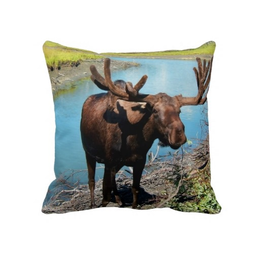1000 Images About Moose Throw Pillows On Pinterest
