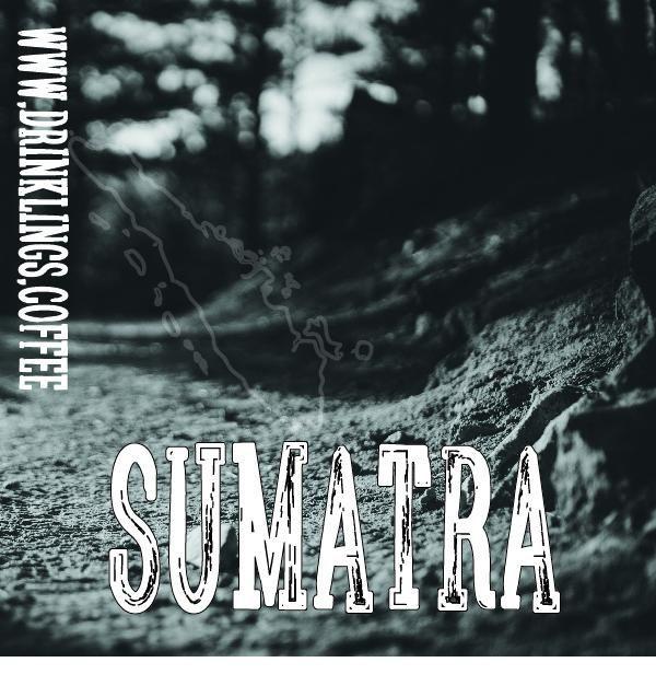 Refuge - Dark Sumatra Coffee (Supporting Human Trafficking Abolition)