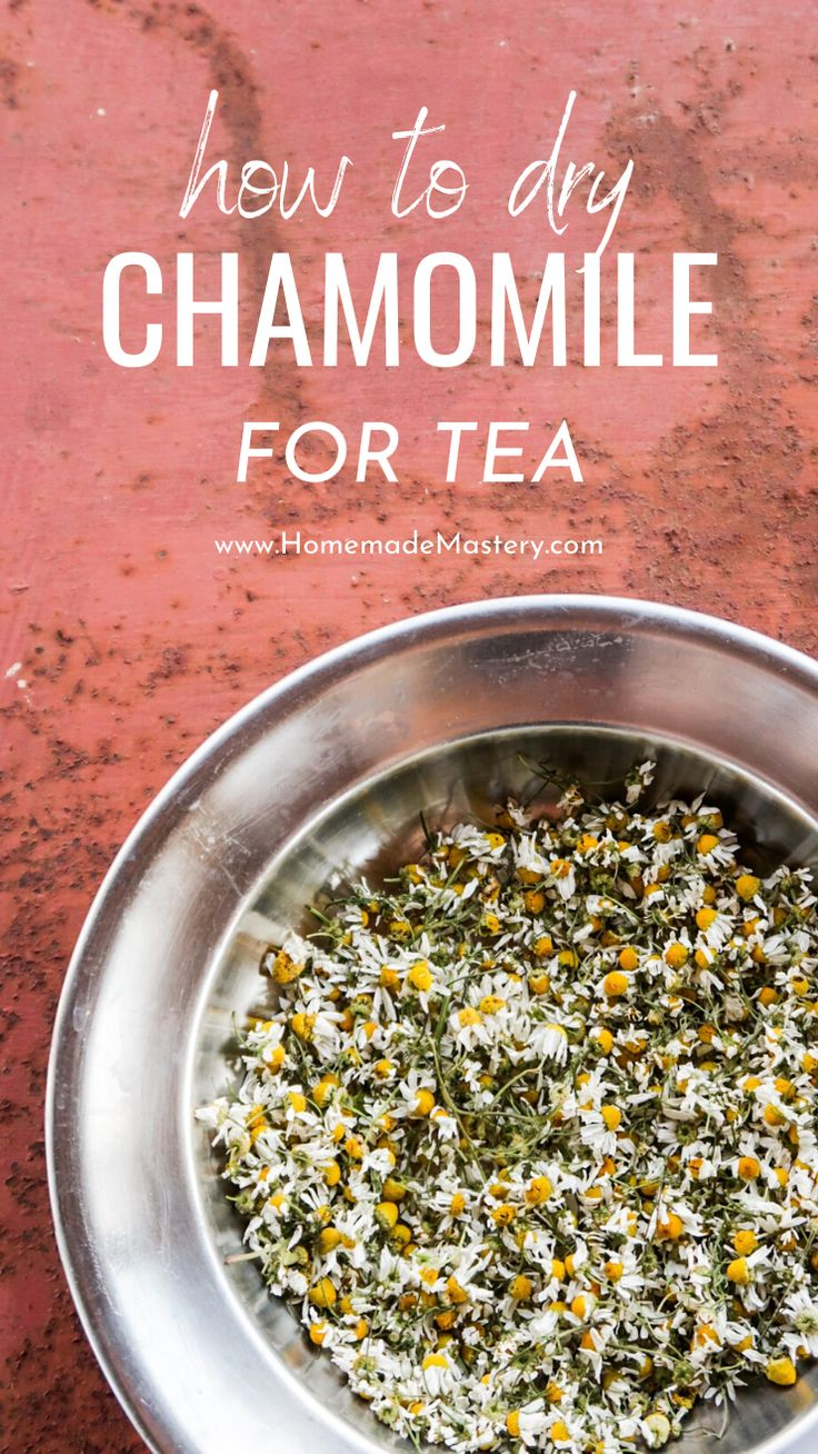 How to dry chamomile for tea homemade mastery in 2020