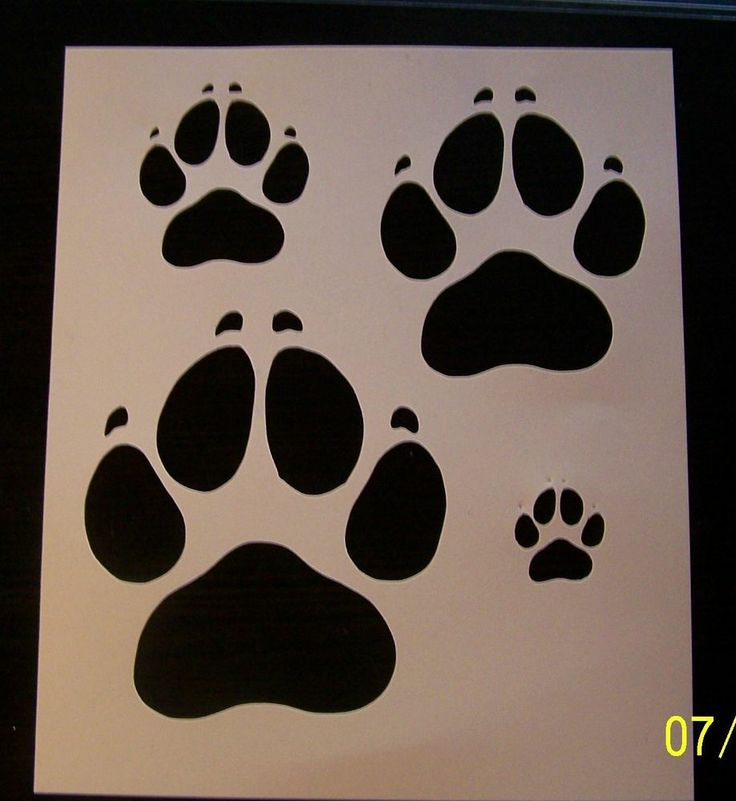 Northern Passages Susie Dog Paws Pet Dogs Dogs
