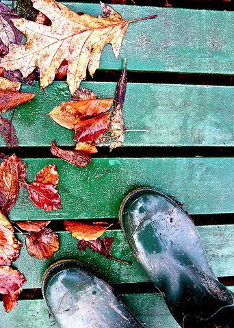 Putting on your wellies, wrapping up arm and blowing the cobwebs away #autumn