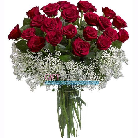 Birthday flower delivery is a snap with ProFlowers. Include the freshest of blooms Order fresh flowers online for same day in RZ B/68, Mahavir Enclave, and New Delhi. Call us on +91 80-10-99-7070