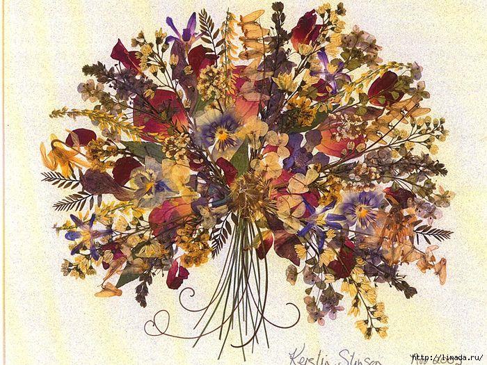 засушенные цветы в рамке - Поиск в Google