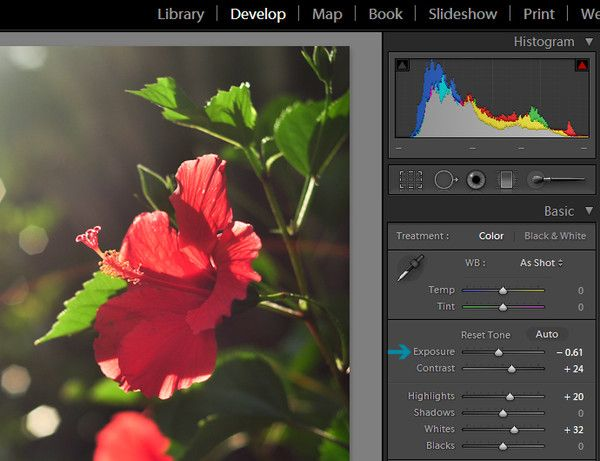 Make Your Backlit Images Pop in Lightroom