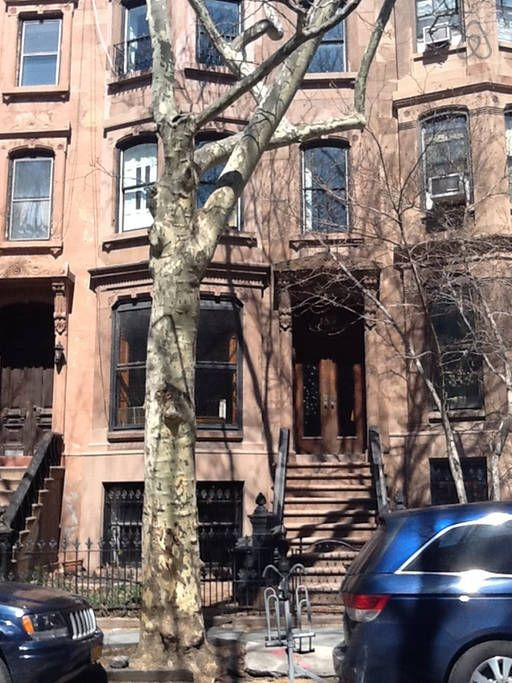 Classic Park Slope Brownstone - 4 bedrooms, 2 bathrooms, 5 beds (only CAD$1154 total)