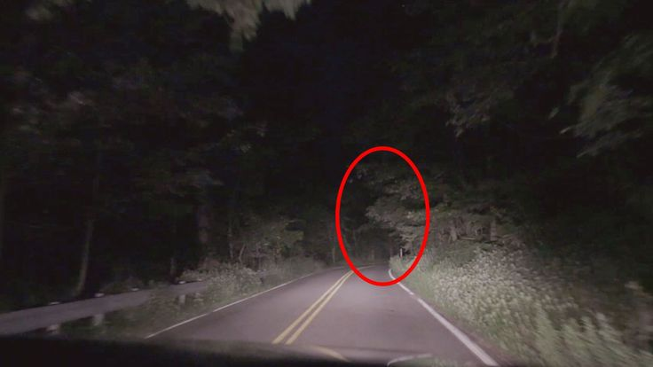 Clinton Road - The Mos...