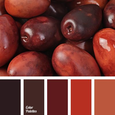 burgundy color, contrasting color combination, maroon and red color, mulled wine color, pale orange, rich red, sangria color, shades of red, warm color palette, wine color.