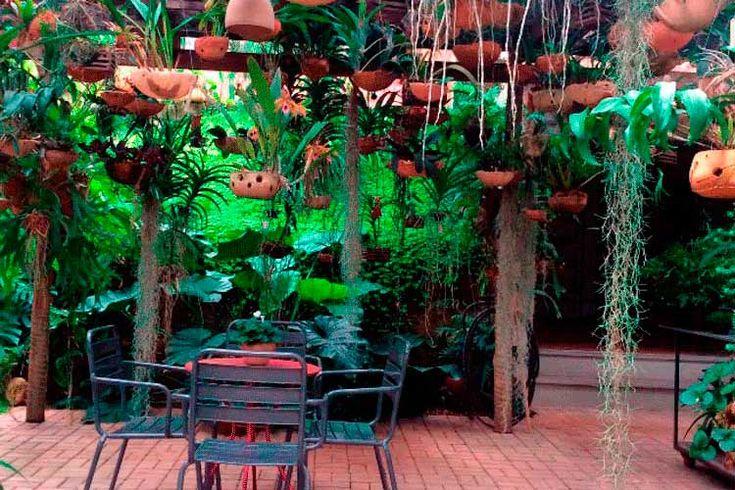 Variedade de plantas e cerâmica chama a atenção no Ateliê, em Contagem
