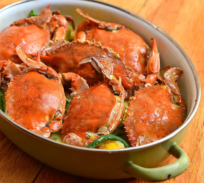 Best 25 coconut crab ideas on pinterest crabs sea crab for Animals that are included in the cuisine of seafood