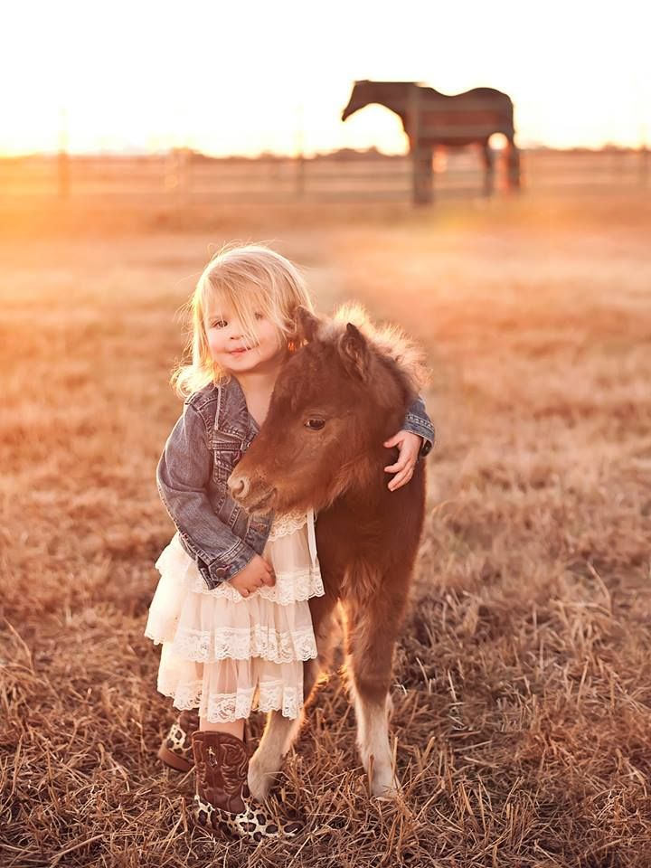 My family's newborn mini horse and cute little girl pose for photo shoot. Result = Adorable - Imgur