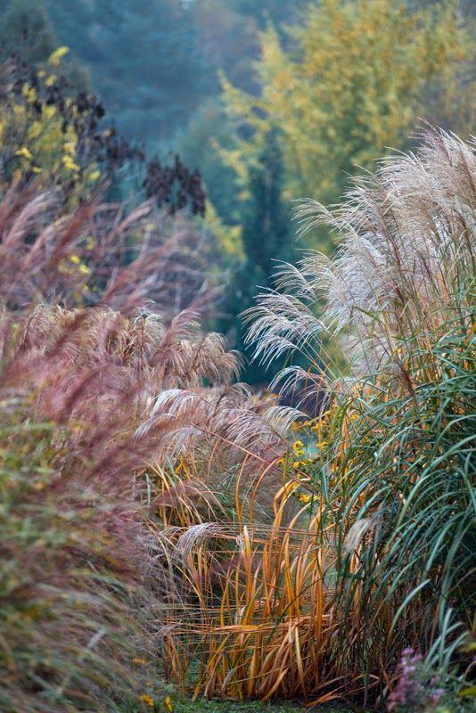 El Blog de La Tabla: Jardines para soñar: Beautiful Gardens IGPOTY N.8