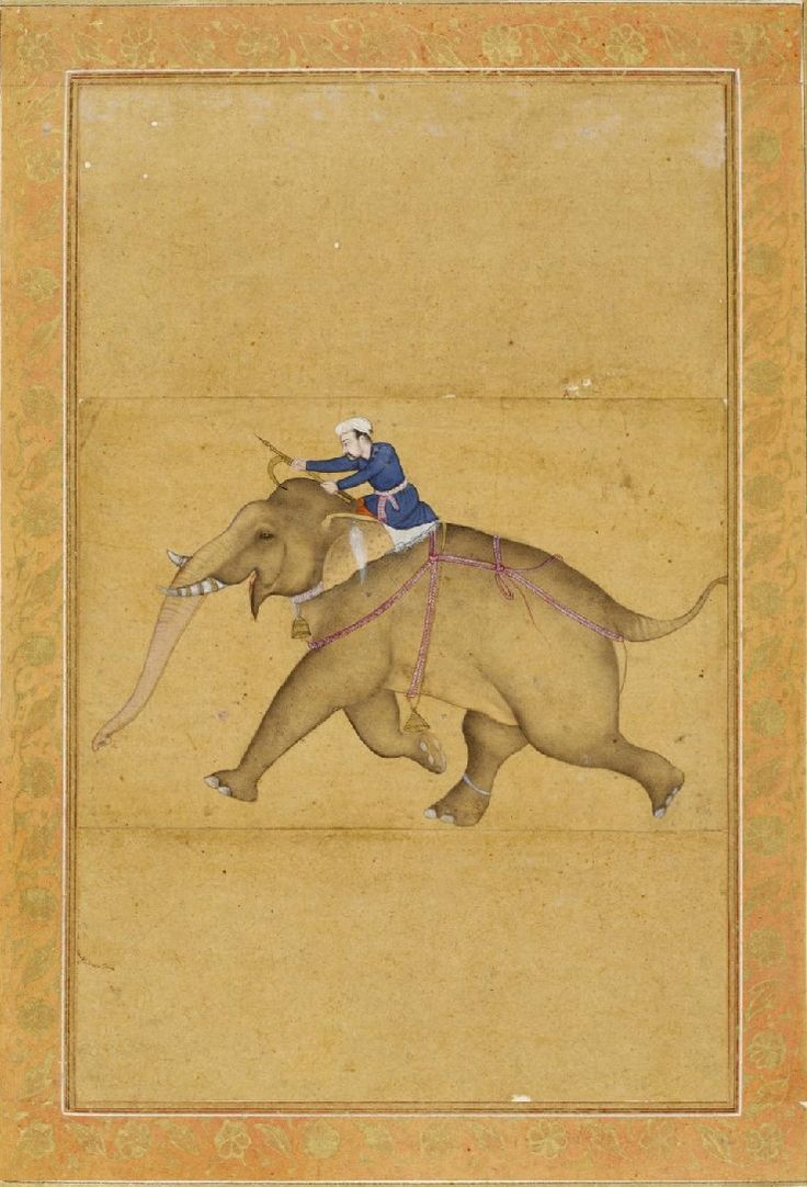 Mahout riding elephant, 17th century Mughal, Large Clive Album; ink, watercolour and gold on paper.
