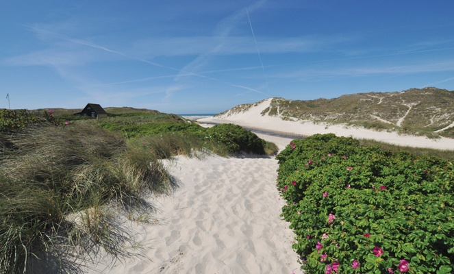Henne Strand Denmark georgeous!!!