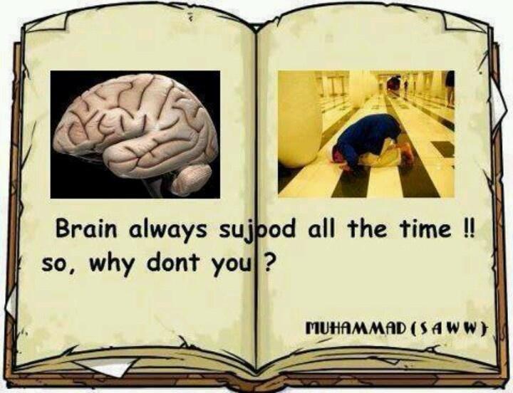 Otak bersujud