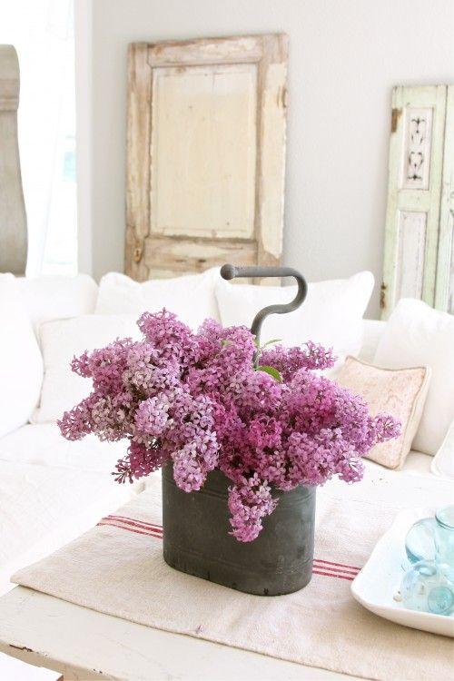 <3 lilacs