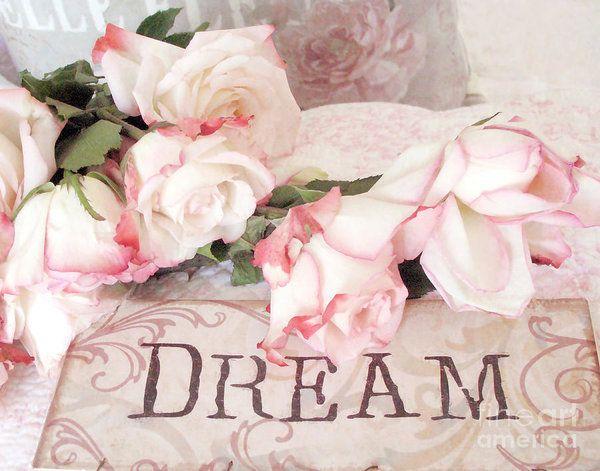 Wondrous Cottage Shabby Chic Roses Typography Dream Pink Roses With Interior Design Ideas Lukepblogthenellocom