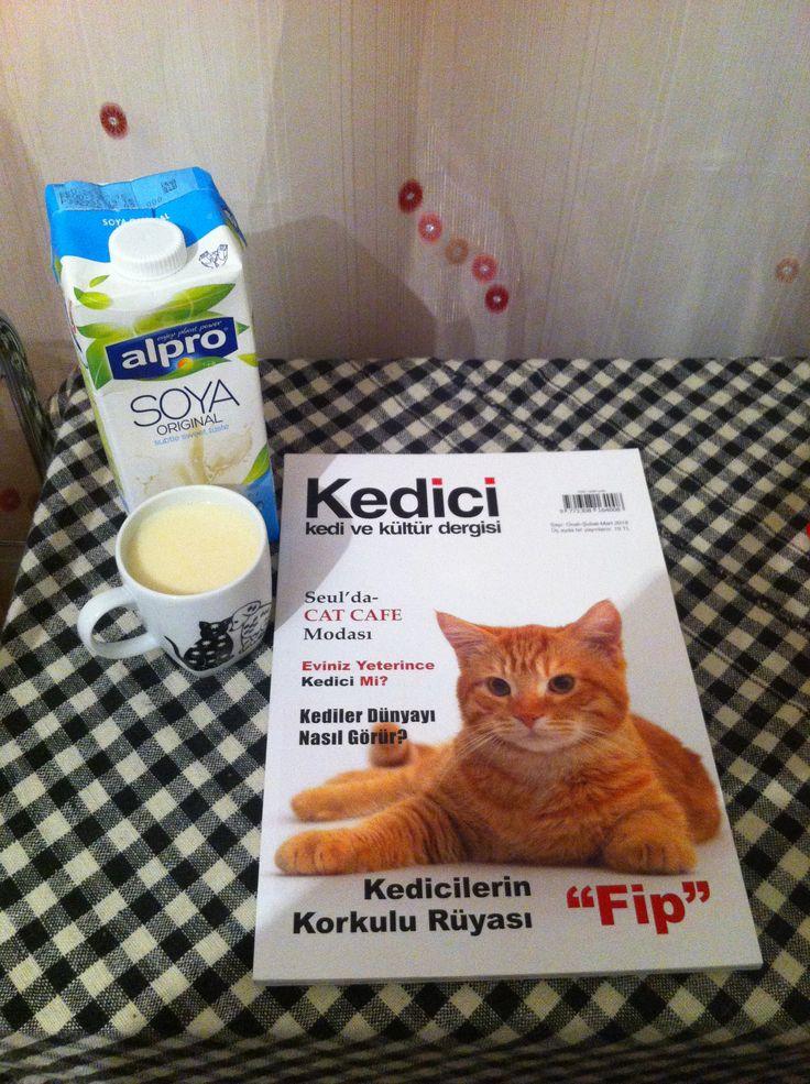 Soya Sütü