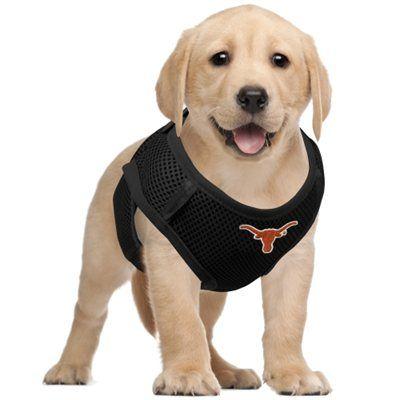 Texas Longhorns Pet Vest Harness - Black