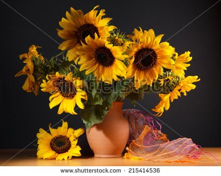 Still life. Beautiful Sunflowers in ceramic  jug  on a dark background