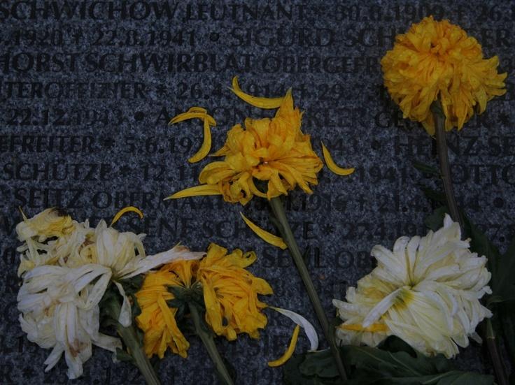 Imagen exposición 'Flors contra l'oblit' (Flores contra el olvido) del periodista y autor de Diari de Guerra, Andreu Caralt. Memorial de guerra Maarjamäe, Tallin.15/09/2010.- Llueve, la humedad es extrema y el frío del otoño se acerca. Una carretera transitada separa la playa de Pirita, en el mar báltico, del memorial. La Werhmacht levantó en 1941 un cementerio. Terminada la guerra, las lápidas alemanas fueron retiradas. En 1988 se reconstruyó un lugar de memoria con el nombre de 2.156…