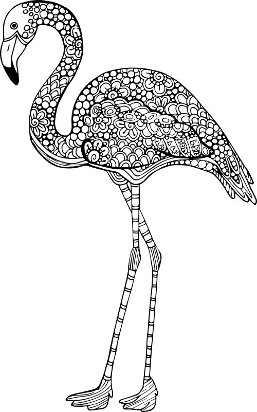 advanced animal coloring page 13 - Flamingo Coloring Pages