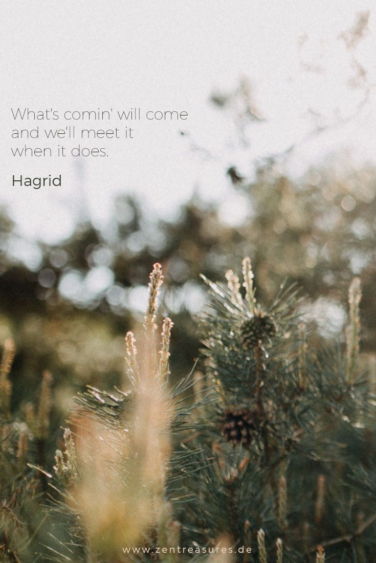 What S Comin Will Come And We Ll Meet It When It Does Hagrid Harry Potter Positiv Denken Lernen Berufung Finden Leben Andern
