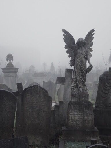 aesthetic cemetery graveyard angel grafbeelde pinterest