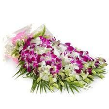 Orchids http://www.a1gurgaonflowers.com/