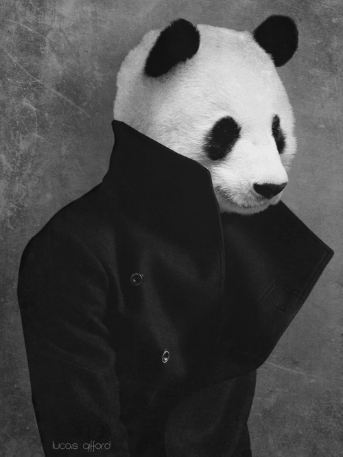 Watch out for the PANDERSONS! (panda people) :O ...