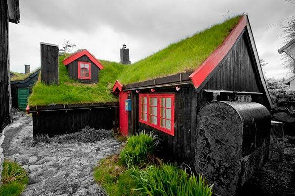 Υπέροχες Σκανδιναβικες πράσινες στέγες