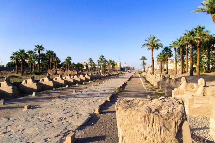 Nilkreuzfahrt | Ägypten | Miss Gliss | Luxor-Tempel | Luxor | Miss Gliss |Phoenix Reisen