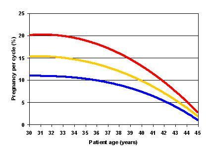 IUI Success Rates at Shady Grove Fertility. | Shady Grove Fertility Center