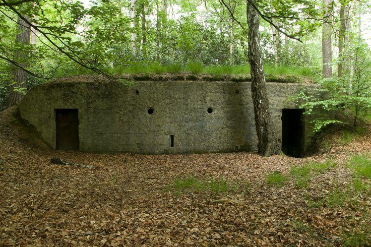 Loopgravenpad in het Mastenbos (Kapellen)