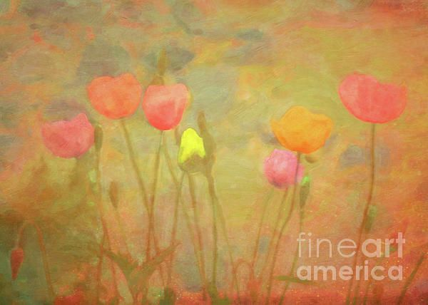 """""""Dreaming of Spring"""" ...enhanced photographic print..."""