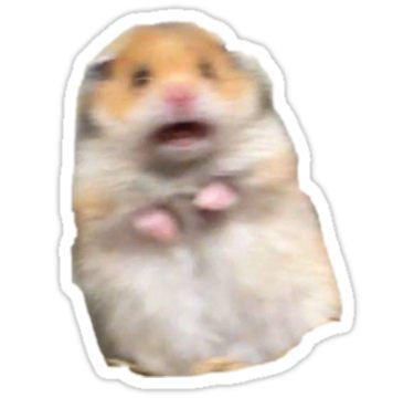 'screaming hamster' Sticker by indiaellison   Pegatinas ...