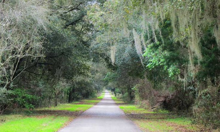 Withlacoochee Trail: This might be Florida's best bike trail