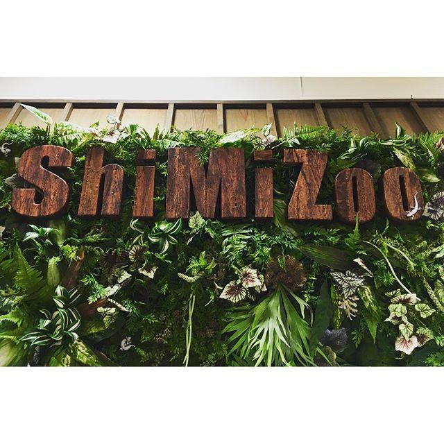 【ba2kuma】さんのInstagramをピンしています。 《ジャングルちっくなファサードに 目が釘付け♪( ´▽`) 爬虫類は大の苦手だけれど アマゾンみたいな雰囲気はいいな〜 #dreamplaza #facade #shimizoo #shizuoka #event #green #amazon #natural #like #relax #wood  #エスパルスドリームプラザ #ナチュラル#リラックス #森林》