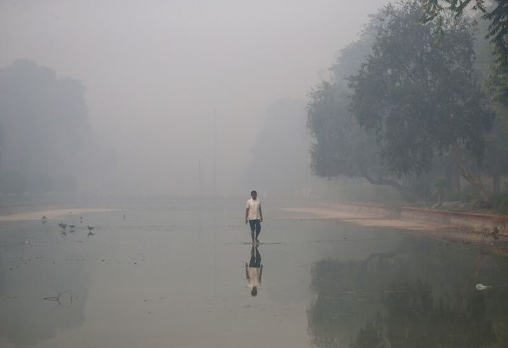 Дели задыхается в смоге, люди должны оставаться дома | Head News