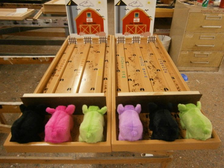 Rent or buy the Pig Racing Carnival Game--a perfect party game for kids. Call us today to place your oder.