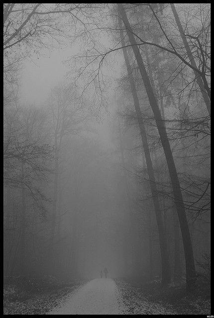 nebliger weg by ~ Martin ~, via Flickr