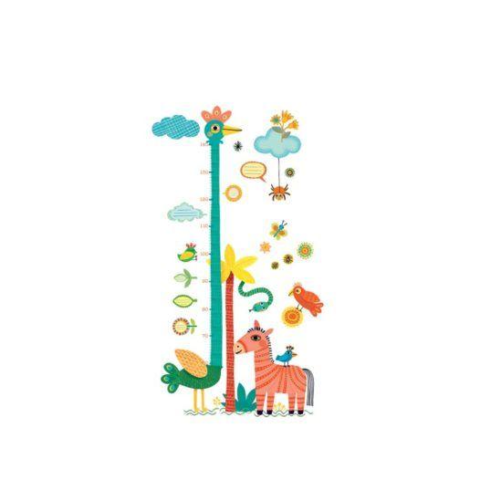 Height chart Ostrich