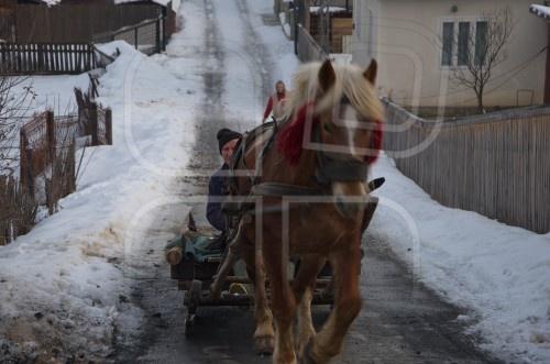 Winter traditional transportation in Bucovina