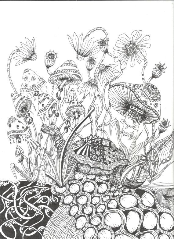 mushrooms and toadstools coloring page